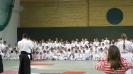 Зимняя школа айкидо 2014