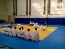 Аттестационный семинар Айкидо в Боровичах 2015.