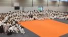 Молодёжный фестиваль Айкидо в Голландии