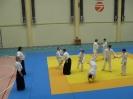 trenirivka_aikido